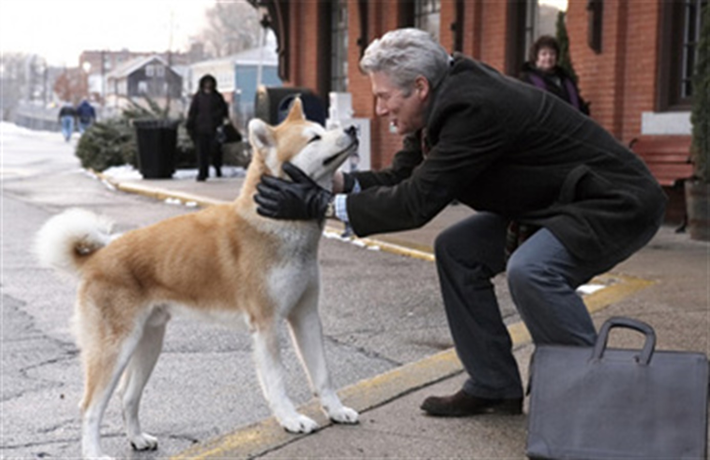 hachi  a dog u0026 39 s story