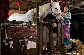 Waar is het Paard van Sinterklaas? - trailer