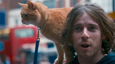A Street Cat Named Bob - trailer
