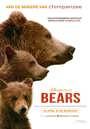 Bears (Nederlandse Versie)