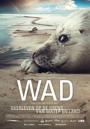 WAD, overleven op de grens van het water