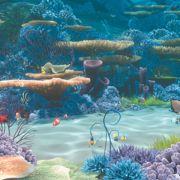 Still Finding Nemo