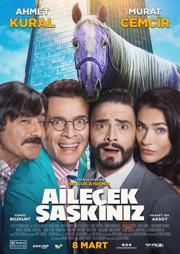 Ailecek Saskiniz