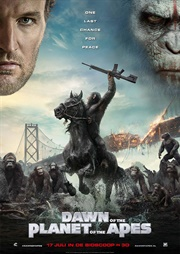 Night of the Apes